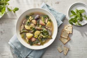 Spring Tonic Soup V1